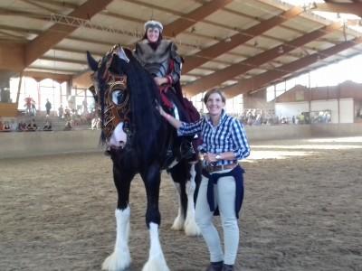 Sanfte Riesen Shire – Horses in Leverkusen