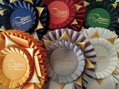 Ponys, Ponys & viele Regeln